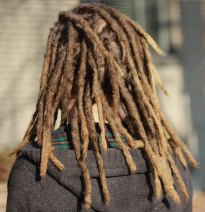 Dreadlocks back