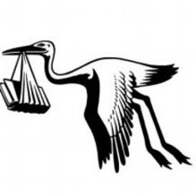 The Book Stork